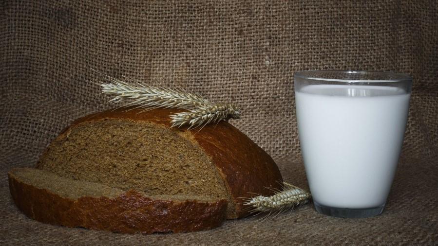 Правильное питание для здоровья: мифы о вреде молока и глютена