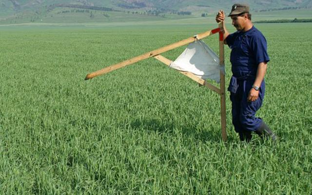 «Земельным» депутатам запретили принимать решения без согласия общин