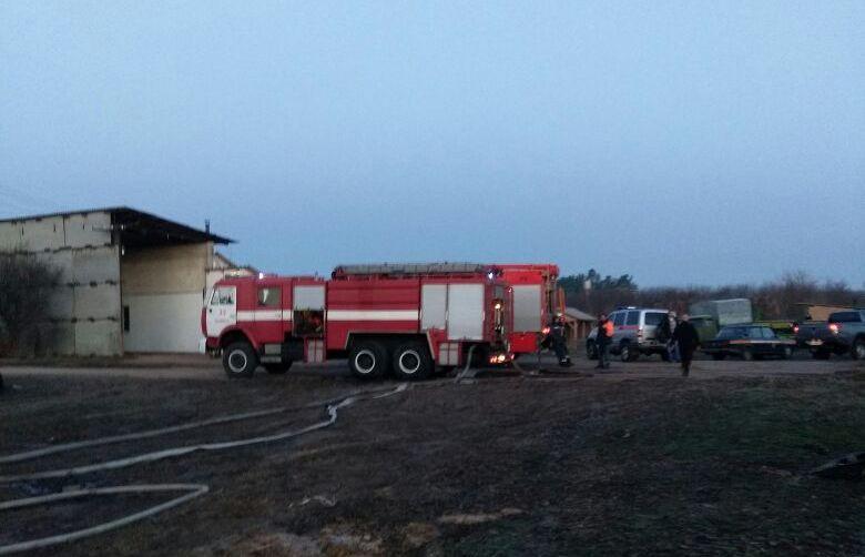 ВКиевской области 4 лошади погибли впожаре наконюшне