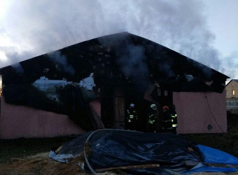 Вгорящей конюшне живьем сгорели лошади— Пожар под Киевом