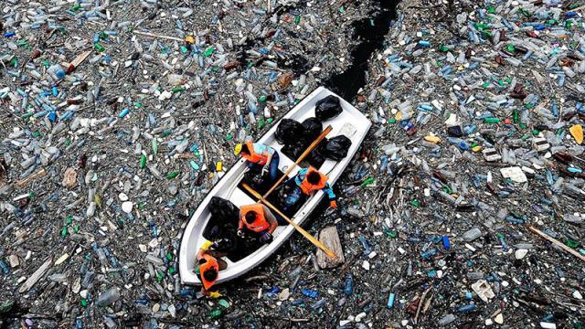 Биологи случайно придали сил 'поедателю пластика'