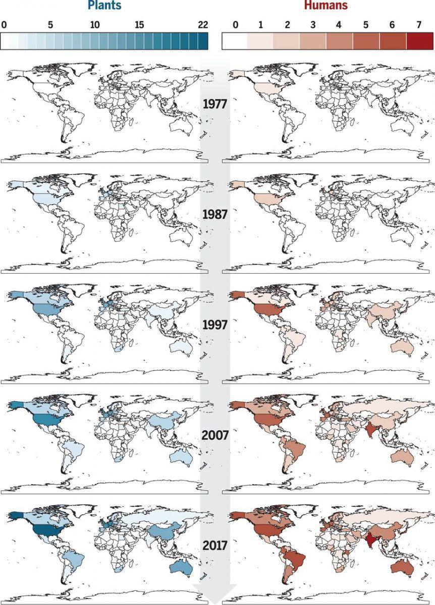 Фото: Слева - карты о растениях, а слева - людях. Темным цветом обозначено устойчивость грибковых патогенов