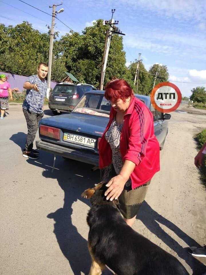 Фото: dtp.kiev.ua.