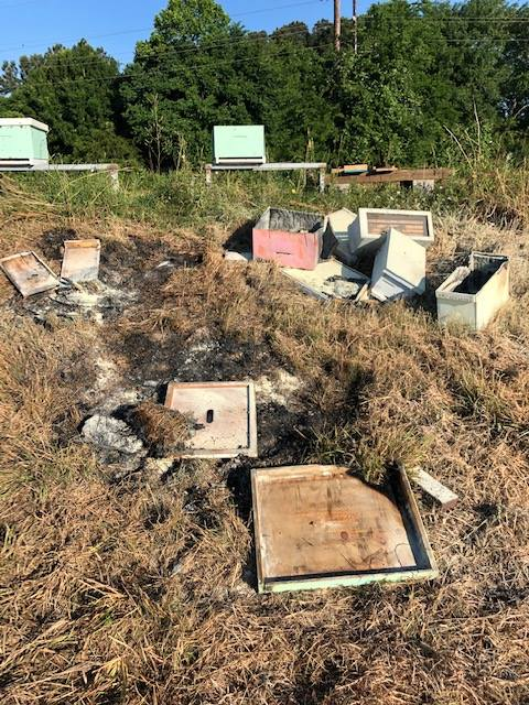 Знищені вулики, фото: Brazoria County Beekeepers Association