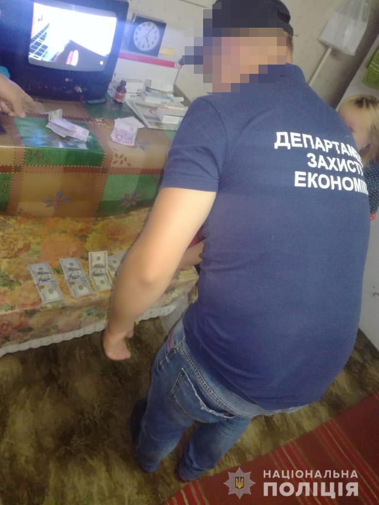 Незаконний видобуток бурштину: в Житомирській області на хабарі погоріли адвокат, суддя і слідчий. Фото: Нацполіція