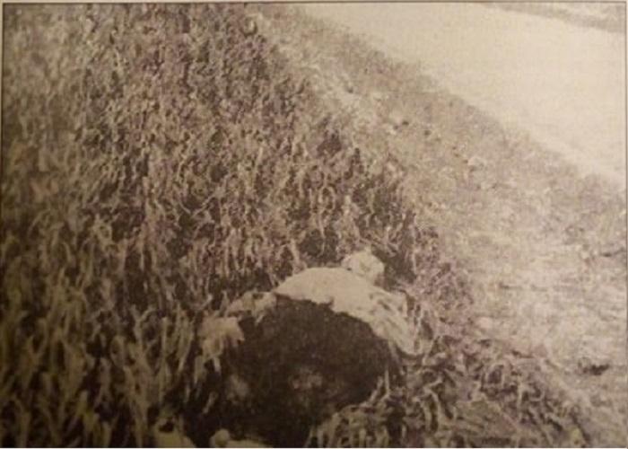"""Голодомор 1932-1933 годов: воспоминания очевидцев, переживших геноцид / Фото: книга """"Злочин"""", Д. Кулиша"""