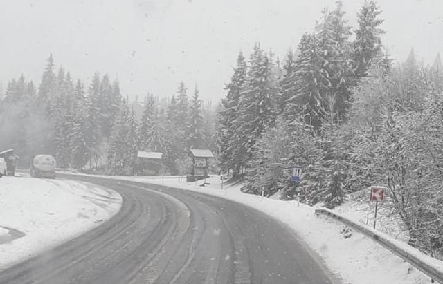 Карпати замело снігом / Фото: mukachevo.net