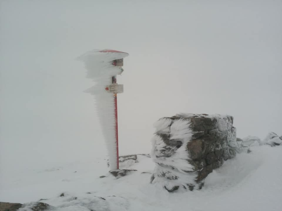 Сніг у Карпатах. Фото: Vasyl Fitsak у Facebook