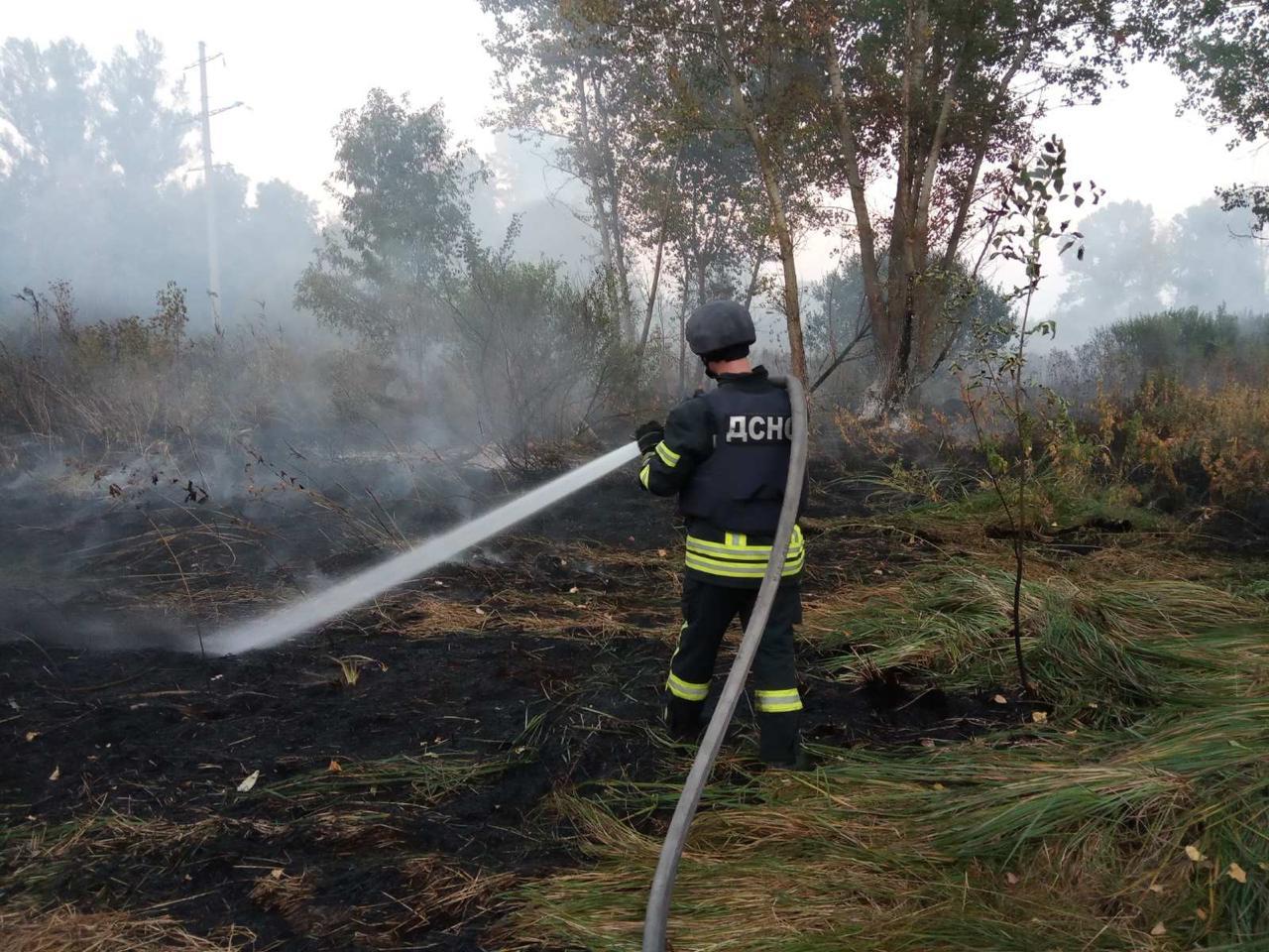 Пожежа на Луганщині. Фото: ДСНС
