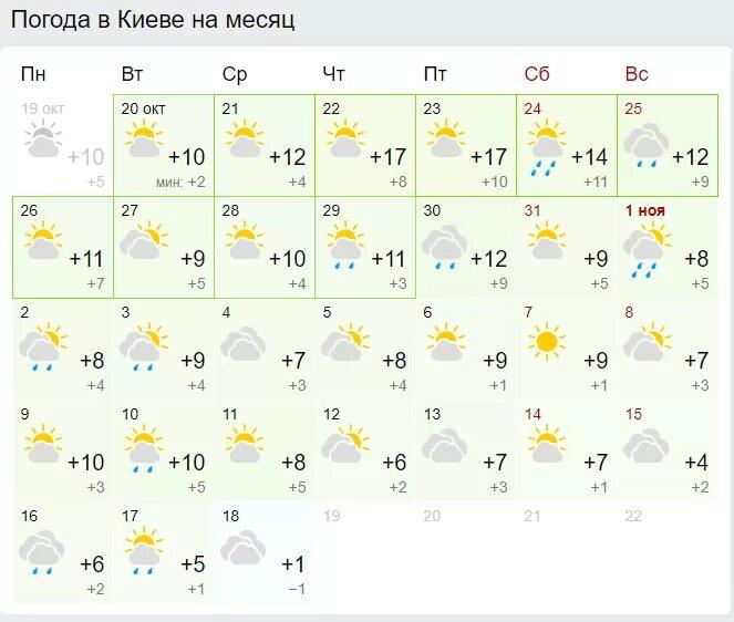 Погода в Киеве. Скриншот: Gismeteo