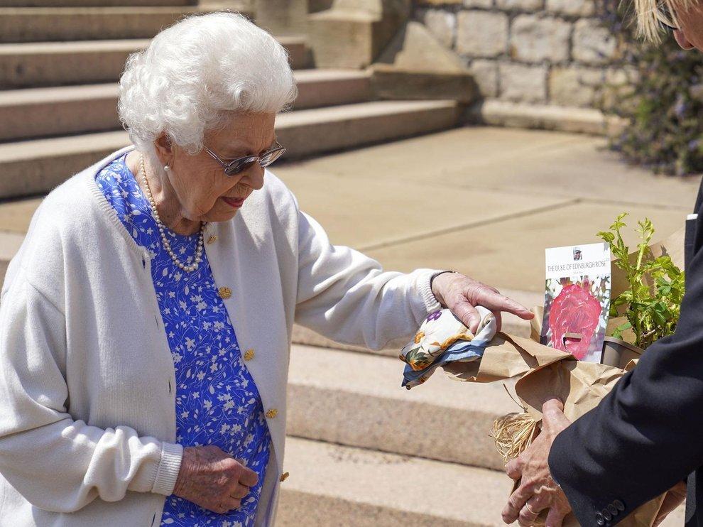 Єлизавета II висадила новий сорт троянд на честь покійного чоловіка. Фото: Express