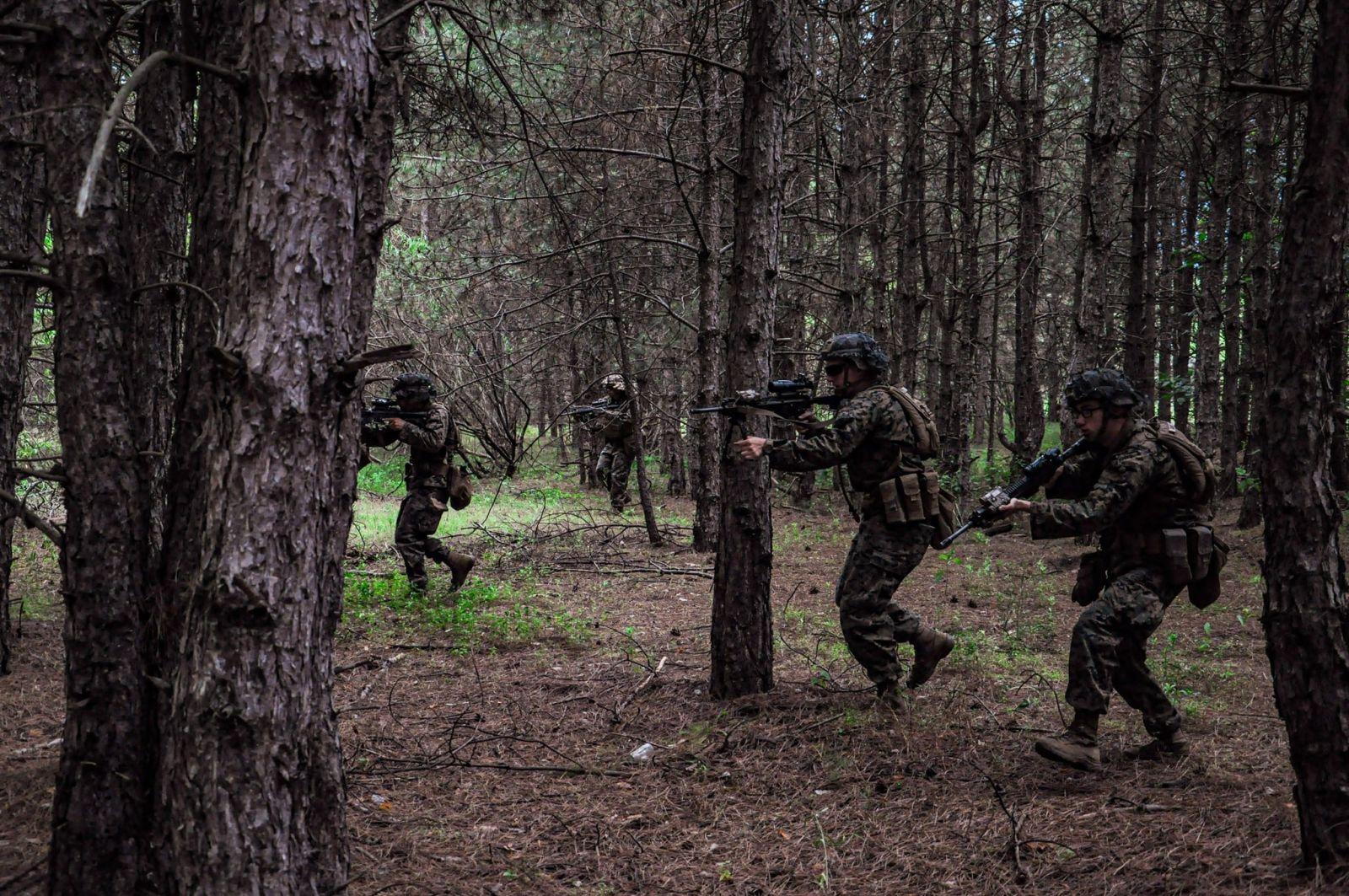 Морская пехота ВСУ, США и Грузии атаковали тыл противника. Фото: Минобороны