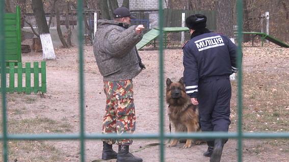 Служебные собаки будут искать в вещах подозрительных пассажиров метро запрещенные предметы. Фото пресс-службы ГУ МВД в Киеве