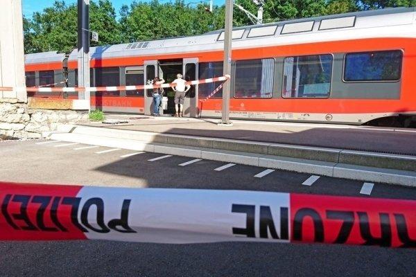 Милиция: напавший напассажиров поезда вШвейцарии неимеет уголовного предыдущего