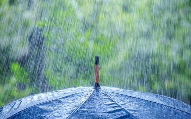 """Результат пошуку зображень за запитом """"Прогноз погоди: дощитиме, місцями грози…"""""""