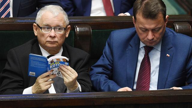 «Атлас котов», который читал Качиньский на совещании сейма, продали нааукционе