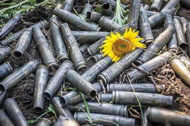 ООН назвала число жертв вДонбассе с2014 года