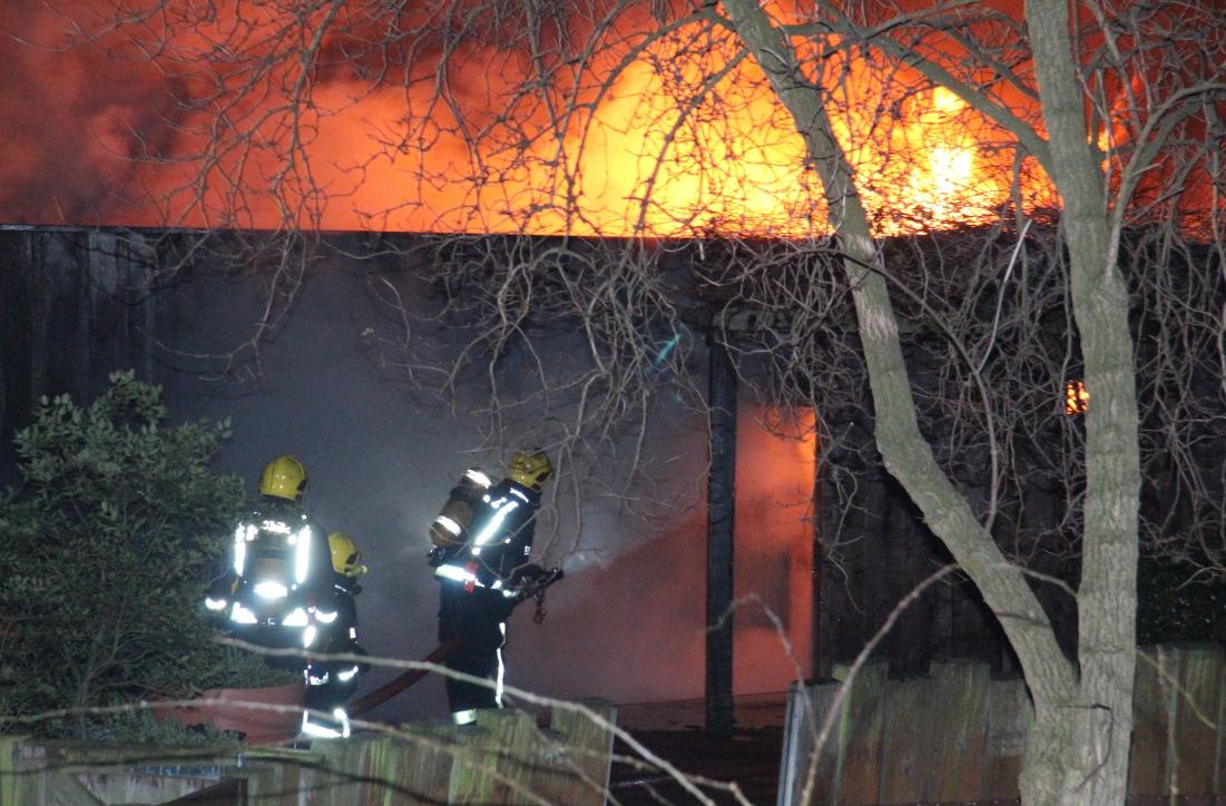 Из-за пожара влондонском зоопарке пострадали 9 человек ипропали несколько животных